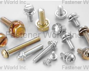 SEMS SCREW(CHIAN YUNG CORPORATION )