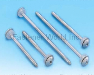 SELF TAPPING SCREWS(SEN CHANG INDUSTRIAL CO., LTD. )
