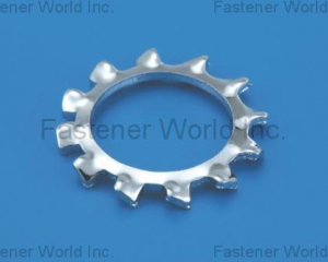 Toothed Lock Washer(External)(L & W FASTENERS COMPANY)