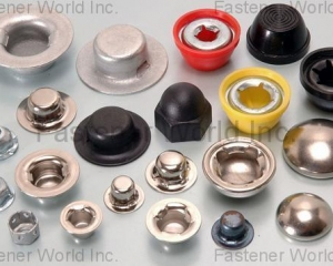 CAP NUTS & PUSH ON CAPS, FASTENERS(HWAGUO INDUSTRIAL FASTENERS CO., LTD.)