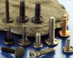 Weld Bolts, Weld Screws(CHAN HSIUNG FACTORY CO., LTD. )
