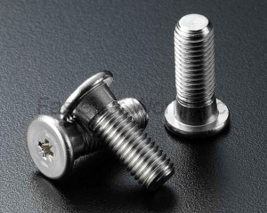 Speical Screw Stainless Steel AISI(SEN CHANG INDUSTRIAL CO., LTD. )