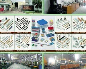 Paint Screws, Drywall Screws, Chipboard Screws, Tapping Screws, Self Drilling Screws, Machine Screws, Furniture Screws, Special Screws, Package(MASTER UNITED CORP. )