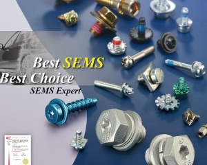 SEMS SCREW  (CHIAN YUNG CORPORATION )