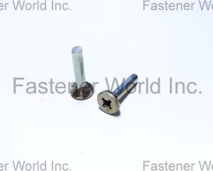 Pozidrive screws(TONG HO SHING INTERNATIONAL CO., LTD.)