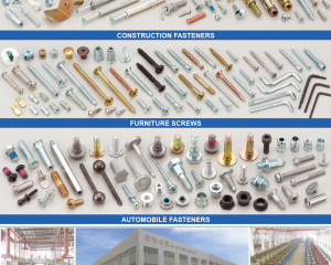 Construction Fastener, Furniture Screws, Automobile Fasteners(MASTER UNITED CORP. )