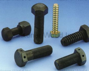 Structural Bolts(CHAN HSIUNG FACTORY CO., LTD. )