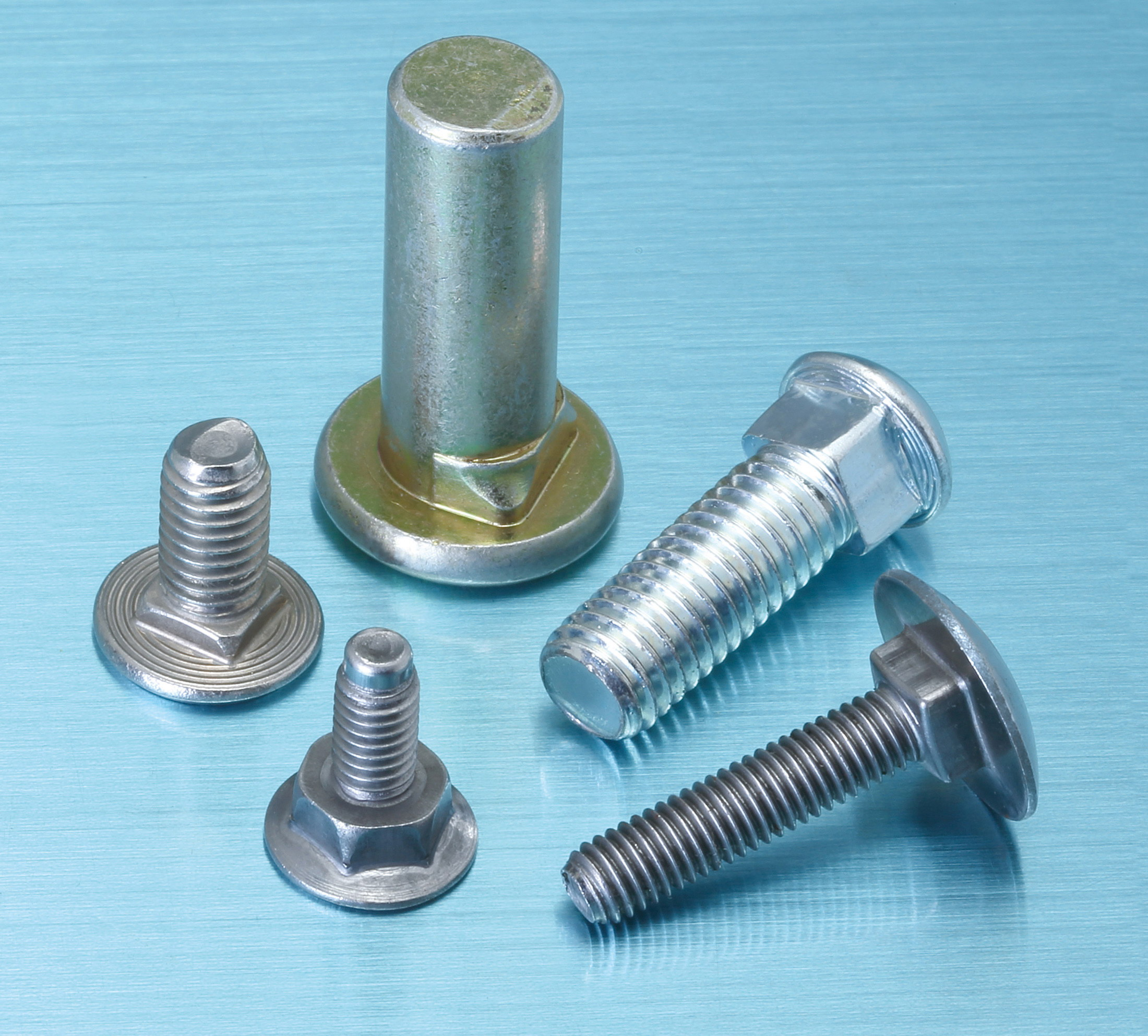 Special Carriage screws